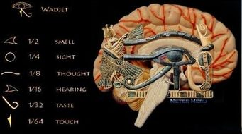 pineal gland cosmic antenna healing energy tools