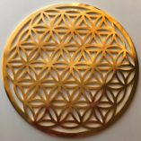 The Flower of Life